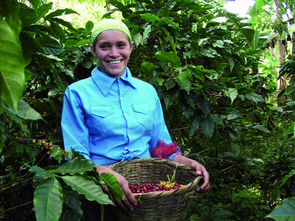 Woman carrying a basket of coffee berries.